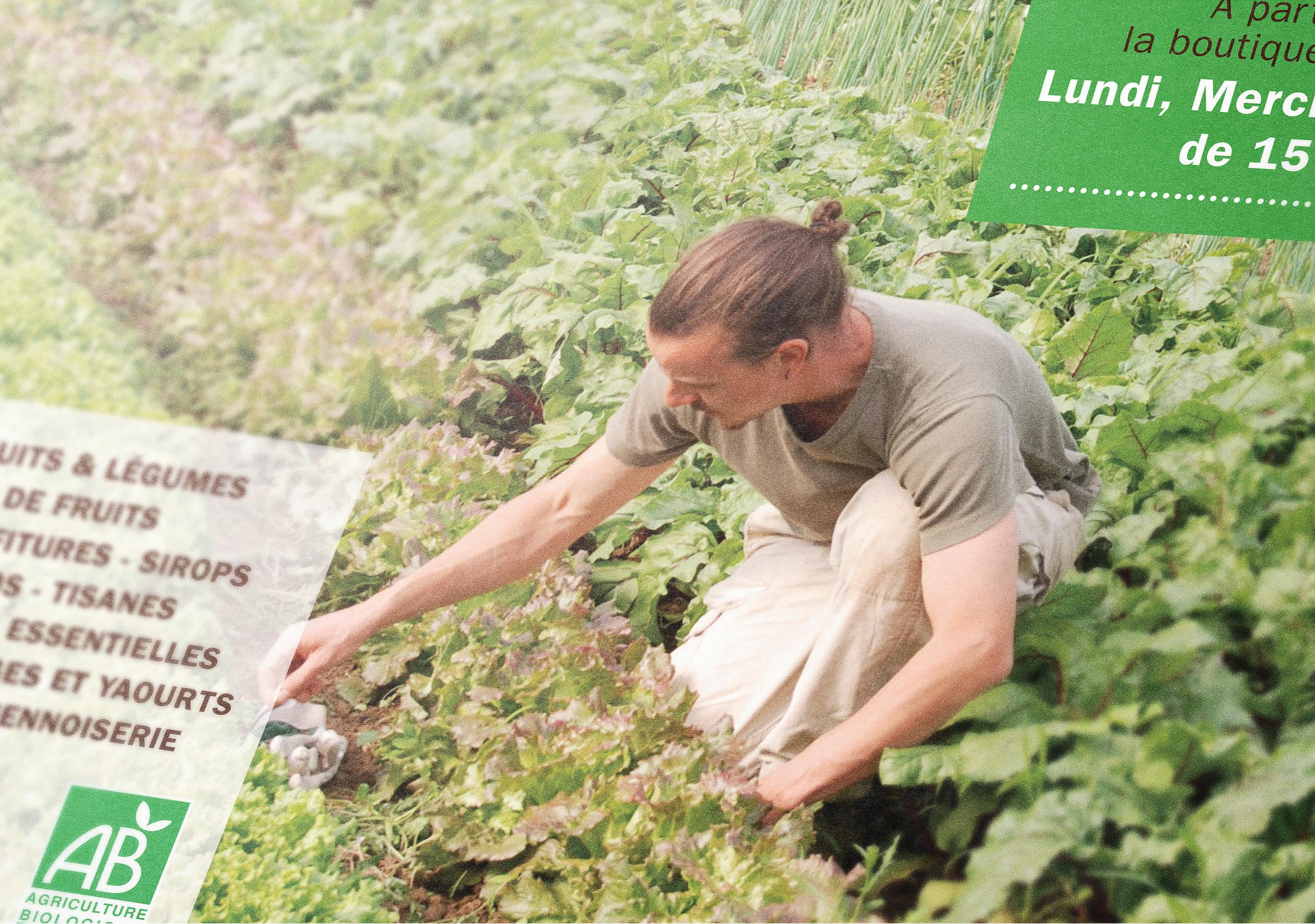Création affiche grand format visuel mock up Compagnons de la Terre Crest Drôme agriculture bio AB